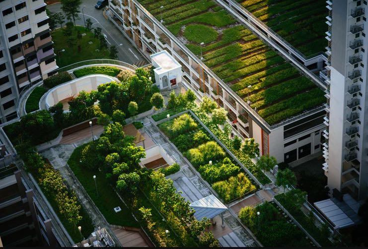 Landscape Principle Melbourne