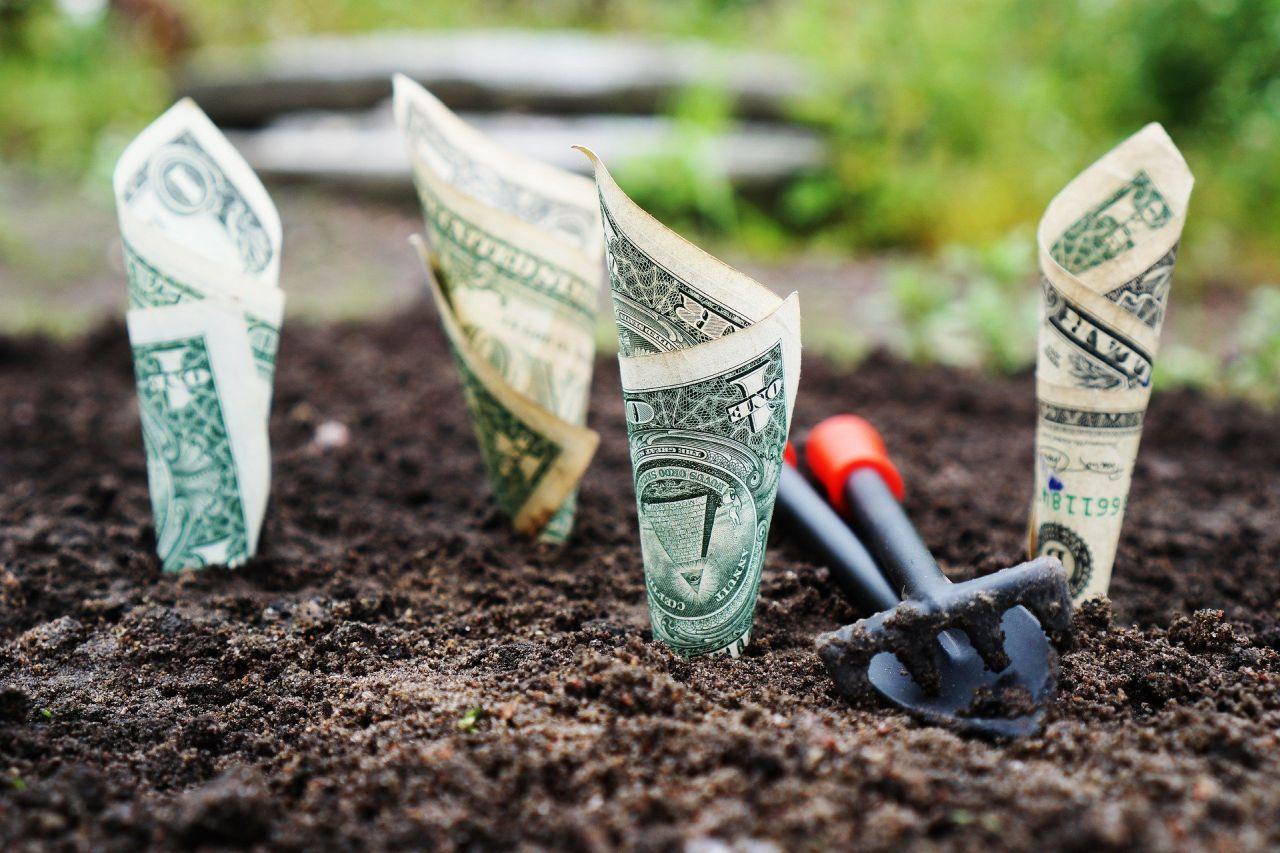 Save Money Building House 3